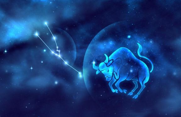 最适合金牛的星座 什么星座和金牛座最配图片